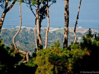 Ocean Pines #44 - Pacific Grove vacation rentals