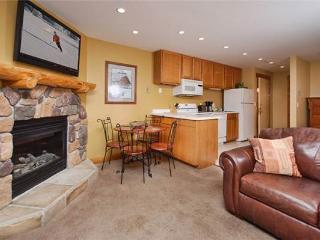 Scandinavian Lodge and Condominiums - SL104 - Steamboat Springs vacation rentals