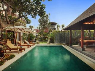 Villa Alun - 3 Bedroom Private Villa in Seminyak - Seminyak vacation rentals