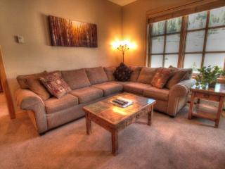 PP502 Passage Point 2BR 2BA - Center Village - Copper Mountain vacation rentals