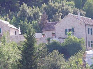 Charming Dalmatian stone villa on the Hvar island - Hvar Island vacation rentals