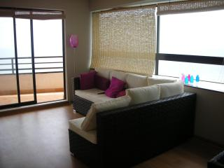 Great Apartment in Viña del Mar, Valparaiso Chile - Vina del Mar vacation rentals