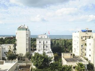 New Renovated 2BR PENTHOUSE -Duplex  Hilton Beach - Tel Aviv vacation rentals