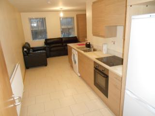 University Lodge Apartments~Queens Quarter Belfast - Belfast vacation rentals