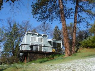 ARTIST'S STUDIO CABIN at Sequoia Resort - house 2 - Badger vacation rentals