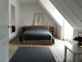 Down Town Copenhagen - Absolute Center - 298 - Copenhagen vacation rentals