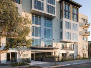 World Class Park Space and Urban Living - Pacific Beach vacation rentals