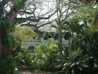 Smart 3 bedrooms villa on Kenya Coast - Msambweni vacation rentals