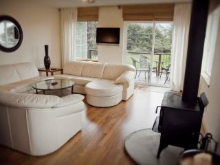Modern Townhouse with Ocean View! - Yachats vacation rentals
