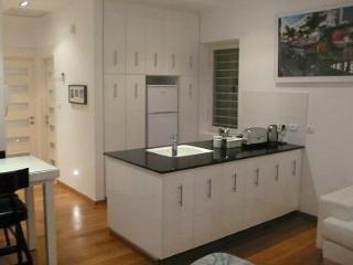 Unit A- Amazing Apartment In The Heart Of Tel-Aviv - Tel Aviv vacation rentals