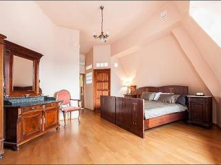 BASILICA LUXURY ATTIC: CASTLE & CITTADELLA VIEW - Budapest & Central Danube Region vacation rentals