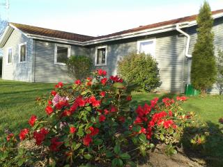 Summer house in Jutland near Aalborg Airport - North Jutland vacation rentals