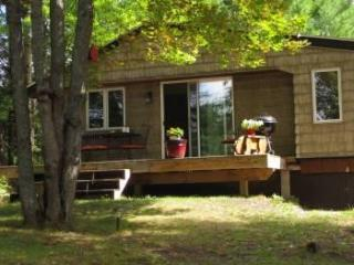 Evergreen Cottage near Pictured Rocks , cozy, semi secluded, woodsy view! - Christmas vacation rentals