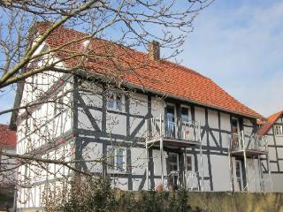 LLAG Luxury Vacation Apartment in Gudensberg - 420 sqft, country style living south of Kassel, comfortable,… - Gudensberg vacation rentals