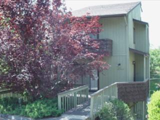 Cute house- A/C, wet bar, loft, full kitchen, BBQ, W/D - Twain Harte vacation rentals