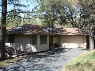 Great Location to walk to Lake Lodge Beach, Tennis Courts, and Playground - Groveland vacation rentals