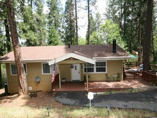 Secluded home in the pines- large deck, fireplace, a/c, w/d, TV/DVD - Groveland vacation rentals