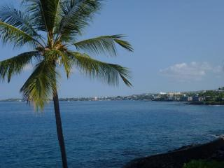 Oceanfront / Ocean View Condo 5 Star Quality - Kailua-Kona vacation rentals