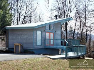 Woodsong   Cozy Privacy Hot Tub Fireplace Pets Grill WiFi  Free Nights - Gatlinburg vacation rentals