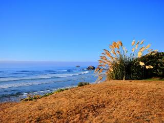 Oceanfront retreat close to all Northern Oregon attractions - Arch Cape vacation rentals