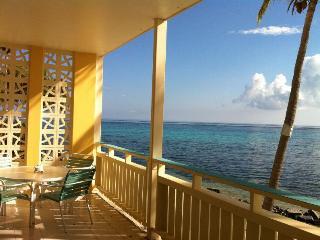 Stunning Sea- Breathtaking Views at Aqua Dream - Christiansted vacation rentals