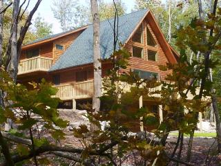 Rocky River Chalet - On Ausable River! - Wilmington vacation rentals