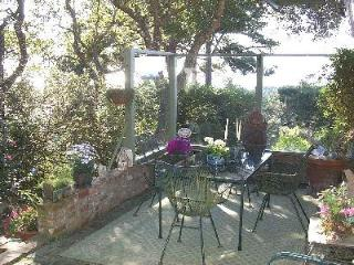 Carmel with Ocean Views, 5 MONTH RENTAL - Carmel vacation rentals