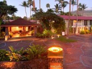 Aina Nalu Maui Luxury in Paradise - Image 1 - Lahaina - rentals