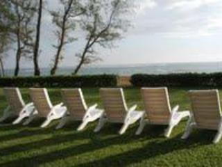 Ocean View - 1 Bedroom Condo located in Kapaa on Beach - Kapaa - rentals