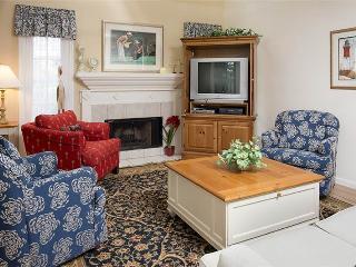 Evian 293 - Hilton Head vacation rentals