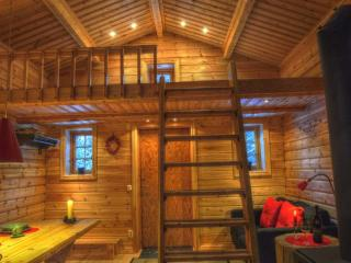 Cottage on Wild River in Lapland/Sweden - Västerbotten vacation rentals