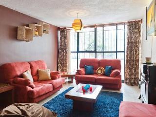 Spacious Excellent Value 3 Bdrm Coyoacan Del Valle - Mexico City vacation rentals