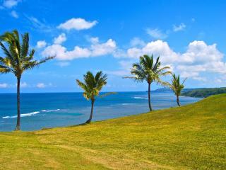 Oceanfront Condo - Princeville vacation rentals