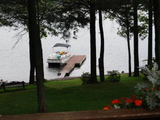 Lake House on Lake Wallenpaupack - Paupack vacation rentals