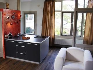 Short Stay Apartment Dependance Rotterdam - Rotterdam vacation rentals
