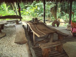 La Maison du banian The Tree house in Vanuatu - Port Vila vacation rentals