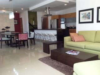 STUDIO ONE 205 - Modern and fully equipped condo! - Playa del Carmen vacation rentals