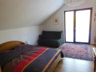 Chambres d'hôtes Em-Garta - Altkirch vacation rentals