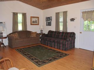 Lil' River Cabin - Galena vacation rentals
