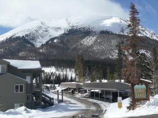 Premium Mountain Retreat near 5 ski resorts - Silverthorne vacation rentals