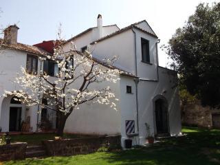 Villa Mimosa - A piece of paradise - San Cipriano Picentino vacation rentals