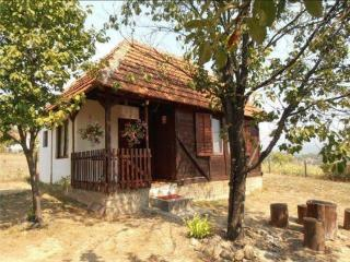 Brvnara Glisovic - Pancevo vacation rentals