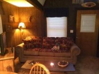 Smoky Mountains Maggie Valley A-Frame Cabin - Waynesville vacation rentals