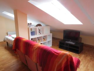 Bright apartment 7 minutes walking from the beach - Basque vacation rentals