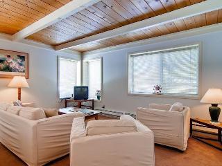 Atelier Condominium 1097 - Ketchum vacation rentals