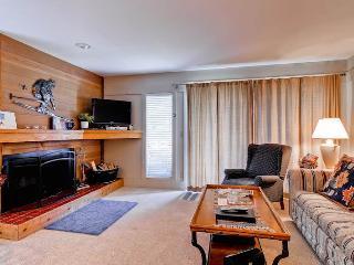 Greyhawk Condominiums 23 - Central Idaho vacation rentals