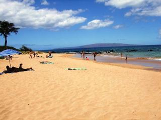 Palms at Wailea #2108 Gorgeous Unit 1Bd 2 Ba  Great Rates! - Wailea vacation rentals
