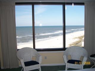 Pet Friendly Wonderful 2 Bedroom on the Beach - Panama City Beach vacation rentals
