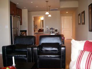 2BR/2 Bath Condo Downtown Denver - Denver vacation rentals