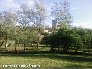 La torretta di sotto, the country corner - Santa Maria della Versa vacation rentals